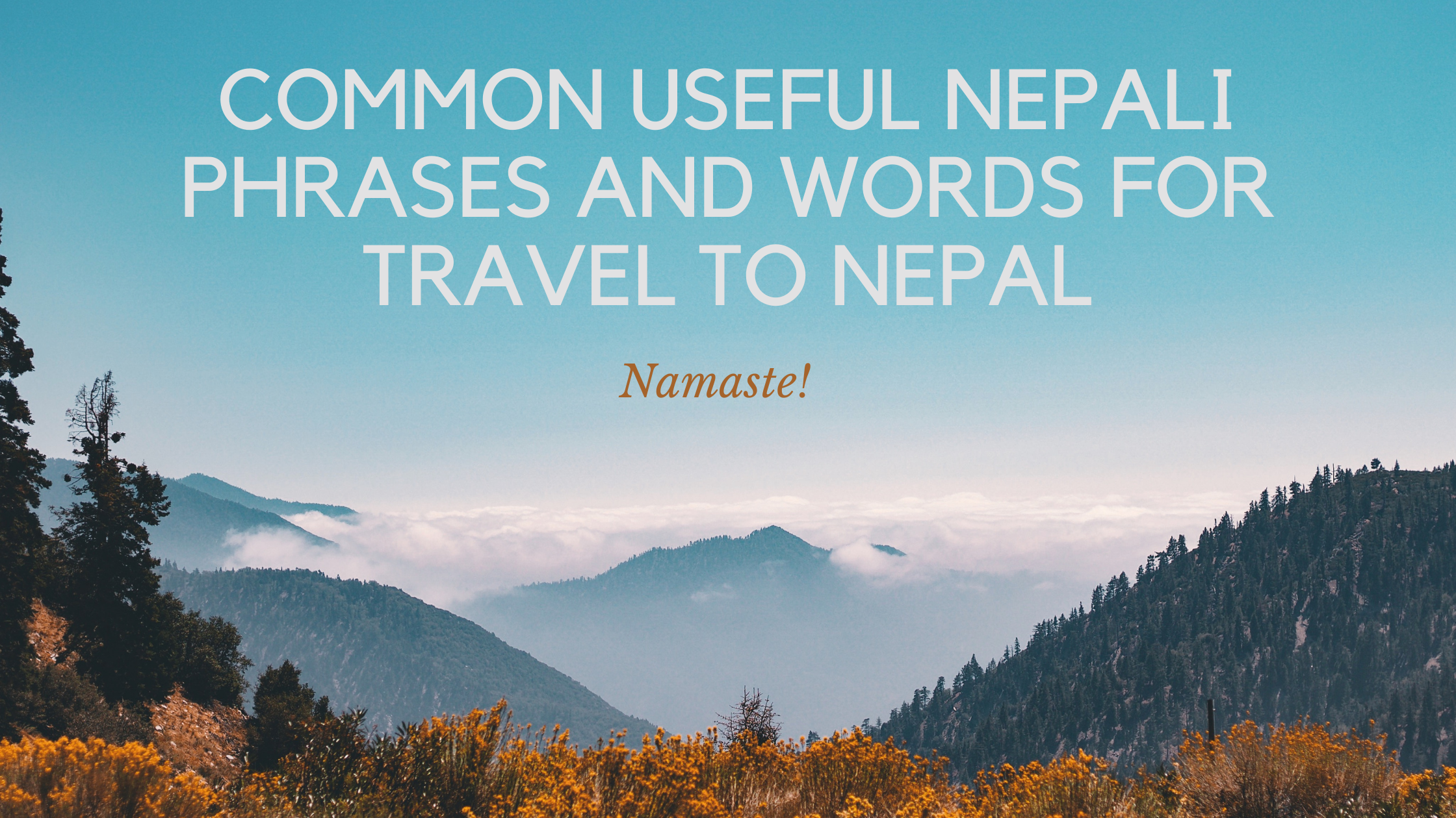 Common Useful Nepali Phrases And Words for Travel to Nepal